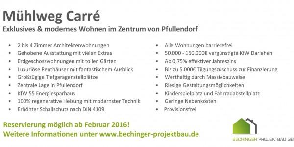 BechingerProjektbauMühlwegcárre